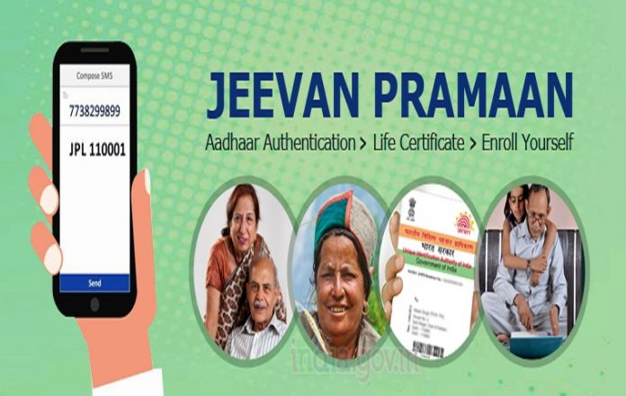 Life Certificate: Important News for Pensioners! What ways can you submit a certificate of being alive? , know here